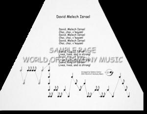 David Melech Israel