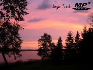 Song of the Northwoods Chickadee Nature Track (Audio)