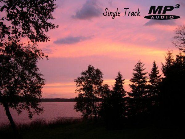 Song of the Northwoods Chickadee Nature Track (Audio)