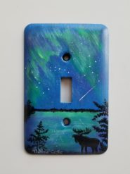 Metal Light Switch Covers, Custom Painted to Your Preferences